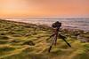 Canon 6D (mahernaamani) Tags: sunset sea green beach nature beautiful beauty canon wow golf landscape amazing cool filter oman muscat 6d غروب تصوير عمان تصويري شاطئ طبيعة بحر 24105mm الشمس مسقط طحالب كانون athaiba canon6d جولف غولف كانوني العذيبة
