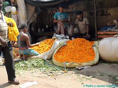 02 CALCUTA 21-calcuta-mercado-de-las-flores (viajefilos) Tags: india pedro jaume calcuta viajefilos