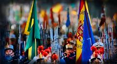 BANDERAS/ESTANDARTES (Ismael I) Tags: espaa spain armas desfile bandera militares fuerzasarmadas diadelahispanidad estandartes