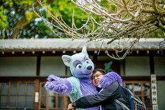 At the #Inari shrine :3 (Keenora Fluffball) Tags: furry kee fursuit keenora