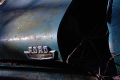 Old Truck (DapperDaphne) Tags: ford abandoned rotting truck rust decay f100 falling rusting destroyed 1950 apart