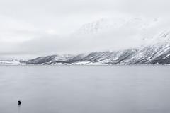 The fog is torn (OR_U) Tags: longexposure winter sea snow mountains ice water norway fog clouds beethoven le fjord oru goethe ludwigvanbeethoven troms 2016 johannwolfgangvongoethe svensby