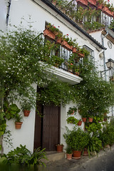 Andalusia: Ronda (Luciano ROMEO) Tags: panorama ronda mura andalusia spagna torri ferro cancellata strapiombo