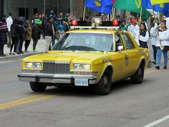 Big Yellow Taxi (Sean_Marshall) Tags: toronto police parade policecar yongestreet metropolitan stpatricksday torontopoliceservices