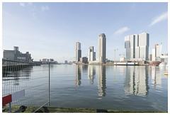Rijnhaven (epha) Tags: holland netherlands rotterdam nederland rijnhaven