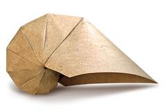 Origami Nautilus (Evan Zodl) (EZ Origami) Tags: evan elephant spiral origami shell hide ez nautilus zodl ezorigami