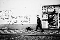 Walking the dog (michael.mu) Tags: leica blackandwhite bw dog 35mm walking czech prague streetphotography praha malstrana m240 leicasummicron35mmf20asph silverefexpro leicasummicronm1235mmasph