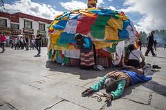IMG_4341_edited-1 (Lauren :o)) Tags: buddhist tibet lhasa prayerflag barkhor circumambulation