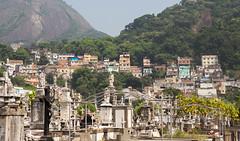 Cemitrio de So Joo Batista (beckstei) Tags: brazil rio brasil de janeiro cemitrio botafogo so joo batista