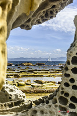 Marco natural (Antonio Camelo) Tags: sea sky naturaleza sun sol nature nikon foto frame