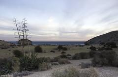 Mientras desaparece la luz (jlpezrecio) Tags: sunset beach andaluca spain sunsets playa almera cabodegata