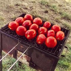 Secondo qualcuno sono i #vegani a far piovere a #Pasquetta per non farci fare le #grigliata #quote   Do #vegans make #weather #raining to avoid #meat #barbecue...?  Meglio i #pomodori arrosto? Si ma per contorno, cob olio di casa sale e origano.   #yummy (agconsulting) Tags: food weather easter vegan yummy healthy natural quote tomatoes meat barbecue sicily raining pomodori vegans pasquetta grigliata vegani thatswhysicily pummarorurustutti