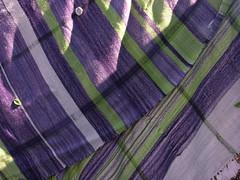woven wool throw (sandySTC) Tags: green wool sock purple yarn lilac blanket stroll ashford weave throw loom handwoven knitpicks rigid heddle