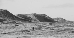 biking the danish desert (joe.laut) Tags: bw bike blackwhite dunes sw schwarzweiss danmark fahrrad mrz dnen 2016 jtland incoloro joelaut