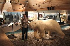 Longyearbyen, Svalbard (carina.ericsson) Tags: museum myself svalbard polarbear longyearbyen