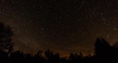 Galloway Forest Park-8957 (pewatts) Tags: stars outdoors scotland april nightsky darksky starrynight dumfriesandgalloway gallowayforestpark