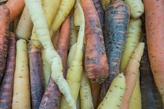 20160423 Provence, France 02592 (R H Kamen) Tags: food france closeup vegetable carrot variety multicolored freshness marketstall vaucluse foodmarket provencealpesctedazur rhkamen