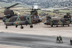 COPYRIGHT FRANCISCO FRANCS TORRONTERA (32) (OROEL (Francisco Francs Torrontera)) Tags: chopper tiger huey helicopter spanish helicopters chinook cougar tigre eurocopter ec135 ch47 ejrcitodetierra uh1 as532 attackhelicopter cargohelicopter ec665tigre ejrcitoespaol uh1h ch47d uh1huey spanisharmy ch47chinook fuerzasarmadasespaolas famet as532cougar ec665 helicoptercrew heavyhelicopter tigrehap spanisharmyhelicopter cougaral ha28hap fuerzasaeromvilesdelejrcitodetierra tigerhap airbushelicopter