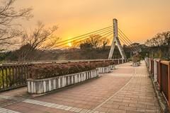 (ShiroWengPhotography) Tags: travel bridge light sunset japan landscape photography hana saitama ano chichibu 2016 menma anohana shiroweng