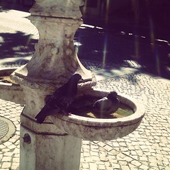 Sintra (leonilde_bernardes) Tags: