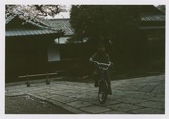 insta097 (sudoTakeshi) Tags: film japan kids tokyo child kodak  sakura cherryblossoms filmcamera portra exakta  kodakfilm carlzeiss   nezu tessar  kodakportra400 ihagee kodakportra  carlzeisstessar exaktavx1000 bicyicle exaktavx tessar50mm
