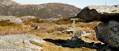 Hiking in the mountains (Syriax) Tags: fjelltur haugesund utno norwegiannature norsknatur hikingmountains haugalandet skjoldastraumen hikingnorway rn tystvr rnfjell rntysvr rnskjoldastraumen fjellrn fjellskjoldastraumen fjelltysvr naturhaugesund naturhaugalandet