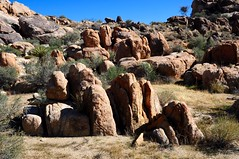 Joshua Tree National Park, California (faungg's photos) Tags: california travel usa nature rock stone landscape us scenery scenic roadtrip    cca joshuatreenationalpark