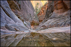 Zion National Park (Roving Vagabond) Tags: park usa reflection texture water observation point landscape utah spring sandstone outdoor hiking explore trail national zion findyourpark