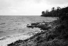 D'Entrecasteaux Channel (Kent Holloway) Tags: au australia gordon tasmania leicam6 fujiacros100 summicron35mm
