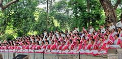 (sajan-164) Tags: new 14 year celebration april dhaka bangladesh bengali 2016 ramna explored botomul chhayanaut sajan164
