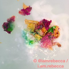 (i.am.rebecca) Tags: floral petals handmade peony fresh lush oxfordstreet fizz aromatherapy everlasting bathbomb lushcosmetics ethical ylangylang selfpreserving ylangsong