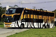 UTIL - Unio Transporte Interestadual de Luxo -  11401 (thiagophotos) Tags: bus buses de coach paint 5 double special deck mercedesbenz 1800 dd nibus tigre luxo paradiso transporte marcopolo g7 mbb unio util bluetec interestadual 11401 1800dd o500rsd