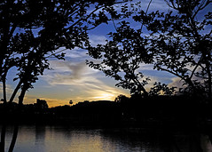 ThruTheTrees (mykadog) Tags: trees sunset sky lake clouds streetshot supershot