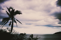 _MG_5033 (Rickard Nilsson) Tags: travel sea nature fiji contrast island village pacific south vitilevu archipelago pacificisland pacificislands viti