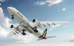 Le vacanze si avvicinano: Alitalia, guida pratica per acquistare il biglietto (ViaggioRoutard) Tags: viaggi vacanze alitalia