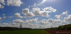 clouds without rain (photos4dreams) Tags: trees panorama forest landscape walk pano sunday feld wiese landschaft wald bume sonntag spaziergang photos4dreams photos4dreamz p4d