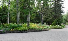 Plate-bande aux Jardins de Mtis. (Gaetan L) Tags: jardins gaspsie provincedequbec fleuvestlaurent route132 baslaurent grandmtis nikond7000 mtishorticultureflowerfleurplatebandeflowerbed