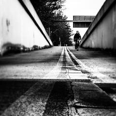 Auf, zu Sonntag (stephanboblest) Tags: street blackandwhite bw berlin lines bike canon linie line monochrom fahrrad bnw fahren abfahrt linien schwarzweis