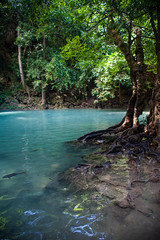 Thailand - Erawan National Park (Cyrielle Beaubois) Tags: park travel tree water thailand asia turquoise branches roots thalande national southeast kanchanaburi erawan 2015 canoneos5dmarkii cyriellebeaubois