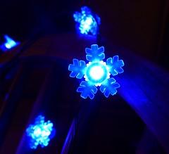 Farewell my glow-lies (DavidCooperOrton) Tags: day6366 6jan16 366the2016edition 3662016