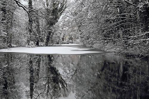 Winter day VIII