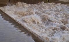 Schumendes Wasser des Neckars. (Bienenwabe) Tags: germany wasser rottenburg badenwrtenberg schneeschmelze staustsufe