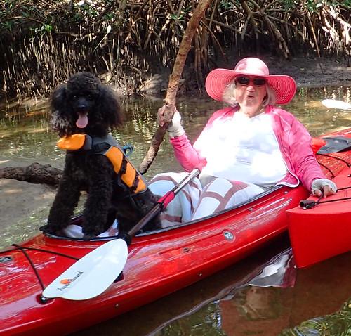 1_1_16  paddleboard tour Lido Key Sarasota FL 12