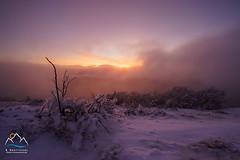 Et la lumire fut ! (R. Grattessol Photographie) Tags: france montagne sony alpha vercors brouillard 2016 drme rhnealpes naige 1635mmf28 a7r ilce7r alpha7ar