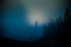 Brocken Spectre (Svein Skjåk Nordrum) Tags: blue light shadow sun mist nature weather misty fog dark circle perception woods outdoor glory perspective optical halo explore illusion opticalillusion phenomenon brockenspectre depthperception magnification projecting explored brockenbow