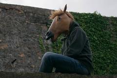 Horse (edarhot) Tags: horse abandoned love cow bmx fuck pierre secret squat skateboard eddy etienne lalande tamberi arhot