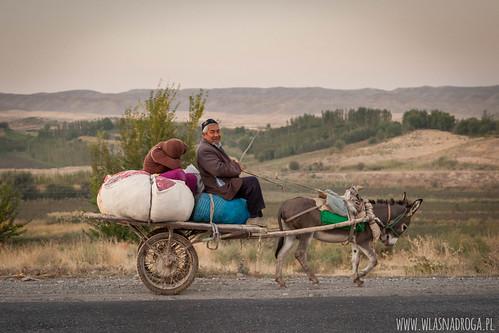Osioł - jeden z głównych środków transportu na wsiach.