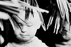 Enigma (jcbkk1956) Tags: boy blackandwhite film statue analog 35mm canon thailand mono kodak head bangkok monk thai figure converted manual thonglo viagginelmondo worldtrekker