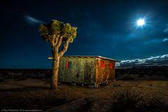 The Hideaway (dejavue.us) Tags: california longexposure nightphotography lightpainting abandoned nikon joshuatree moonrise mojave shack nikkor mojavedesert d800 vle 180350mmf3545