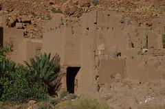 imgp5255 (Mr. Pi) Tags: trees plants ruin morocco kasbah tinghir highatlas